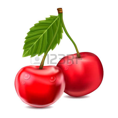 1,029 Sour Cherries Stock Illustrations, Cliparts And Royalty Free.