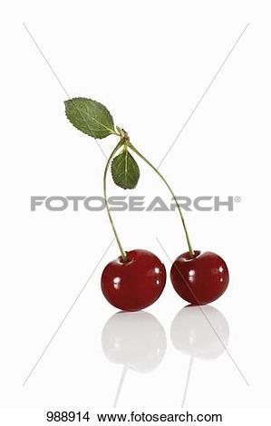 Stock Photo of Pair of sour cherries 988914.