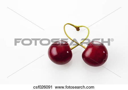 Stock Photography of Stems of two sour cherries shaping a heart on.