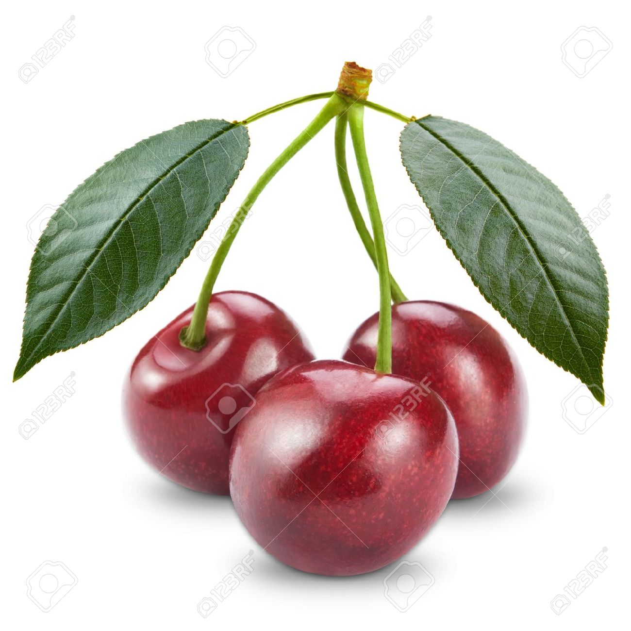 Ripe Cherry Isolated On White Background Stock Photo, Picture And.