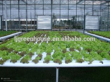 1000+ ideas about Hydroponic Systems For Sale on Pinterest.