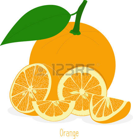 86 Sour Oranges Stock Vector Illustration And Royalty Free Sour.