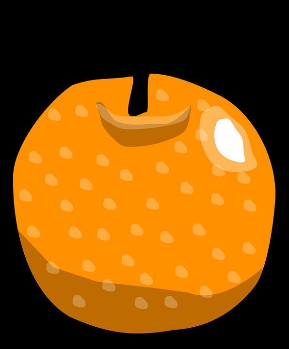Free vector graphic: Orange, Fruit, Citrus, Sour.