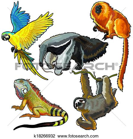 Clipart of set with animals of south america k18266932.