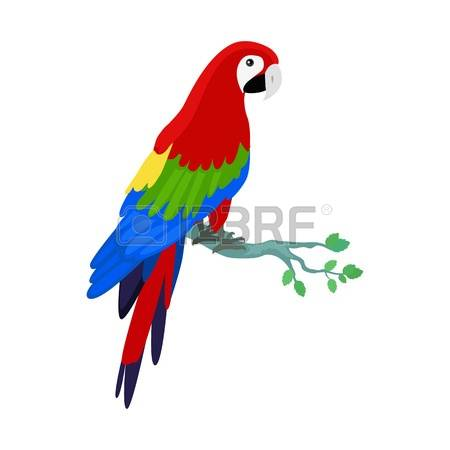 444 Amazon Parrot Stock Vector Illustration And Royalty Free.