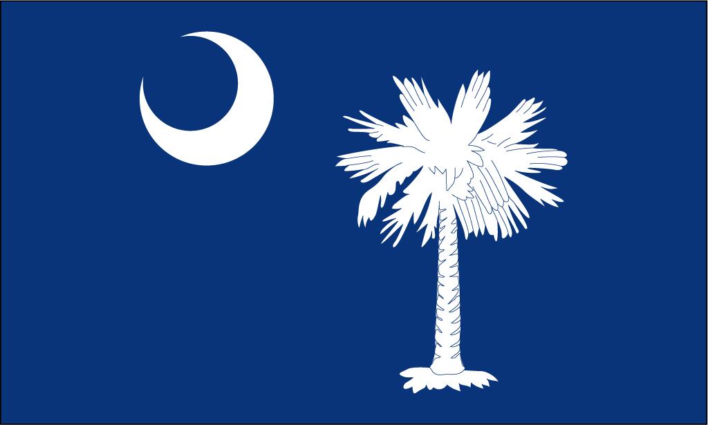 South Carolina Flag Vector.