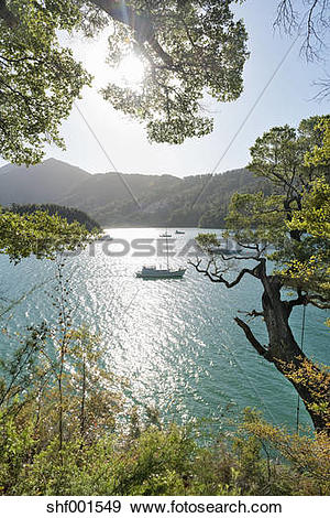 Stock Photograph of New Zealand, South Island, Marlborough Sounds.