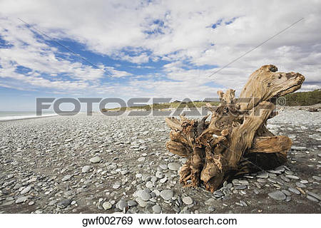 Stock Photograph of New Zealand, South Island, West Coast.