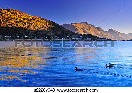 Stock Photography of Te Anau, South Island New Zealand u22267940.
