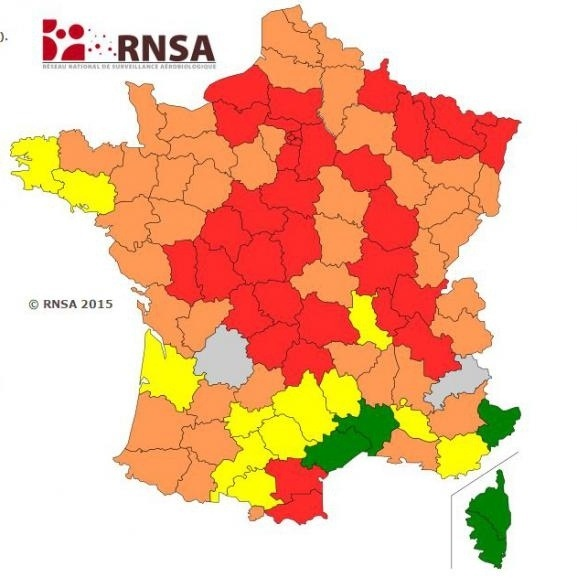What type of pollen am I allergic to in the south of France?.