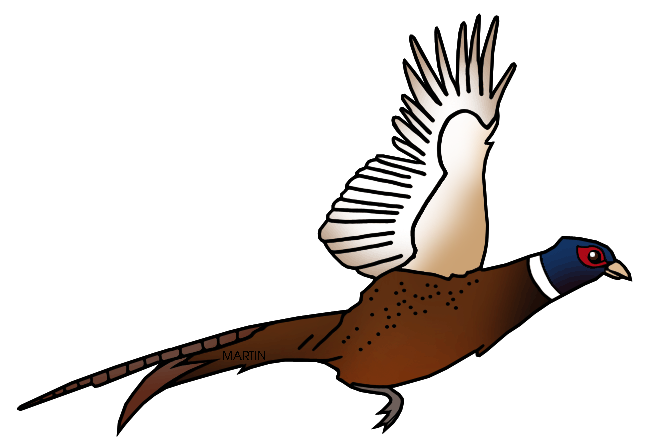 Free United States Clip Art by Phillip Martin, State Bird of South.