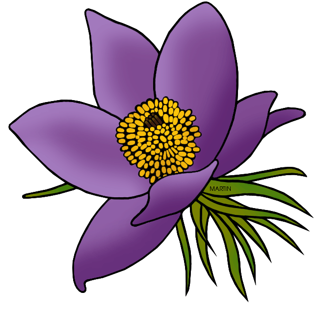 Free United States Clip Art by Phillip Martin, State Floral Emblem.