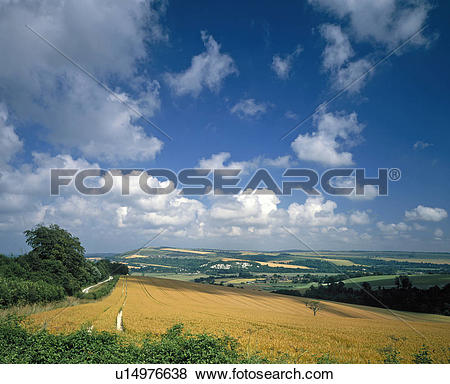 Pictures of England, West Sussex, South Downs, The Sussex Downs.