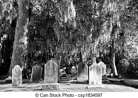 Picture of Old Gravestones Under Spanish Moss BW.