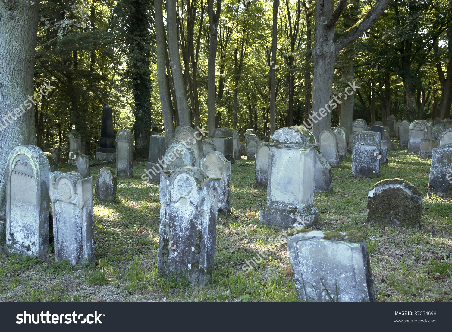 Old Jewish Graveyard With Lots Of Tombstones And Trees In Southern.
