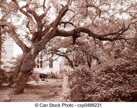 Stock Photography of Southern graveyard.