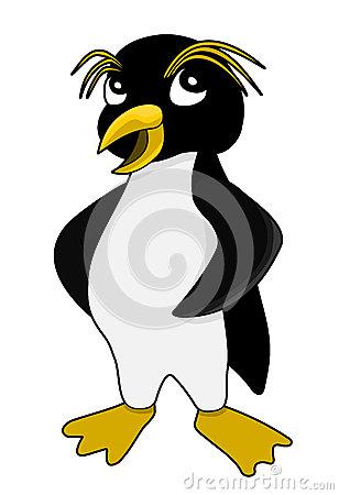 Rockhopper Penguin Stock Illustrations.