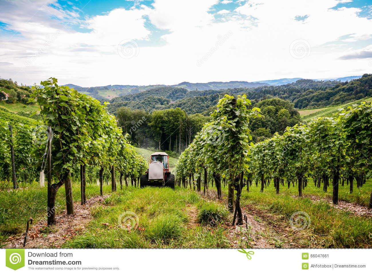 Southern Styria Austria.