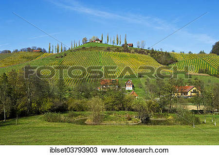 "Stock Photo of ""Vineyards in autumn, at Gamlitz, Southern Styria."