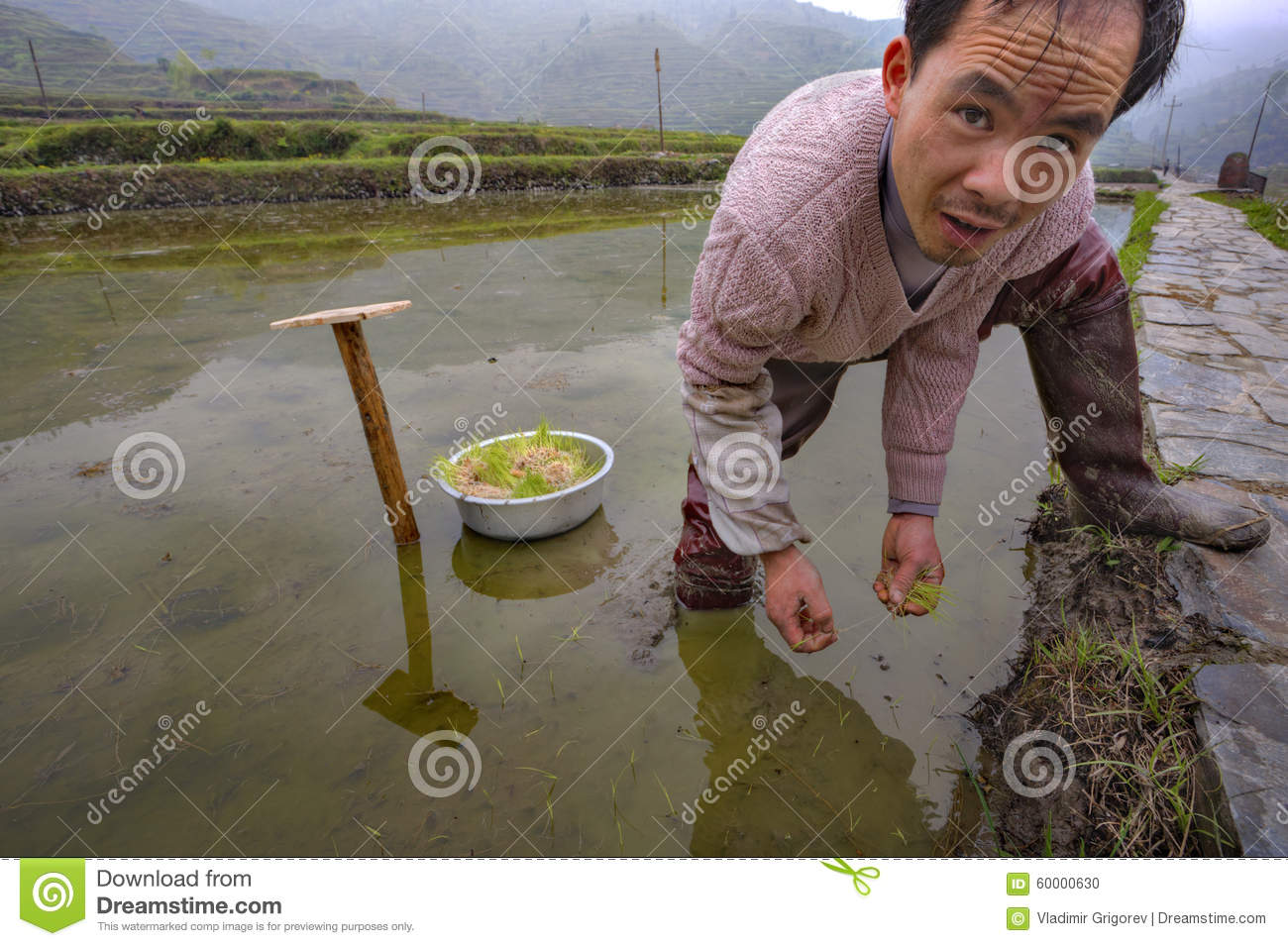 Farmers Busy With Planting Crops In SW China. Editorial Image.