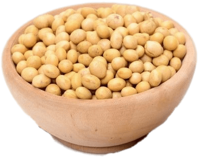 Bowl Of Dried Soybeans transparent PNG.