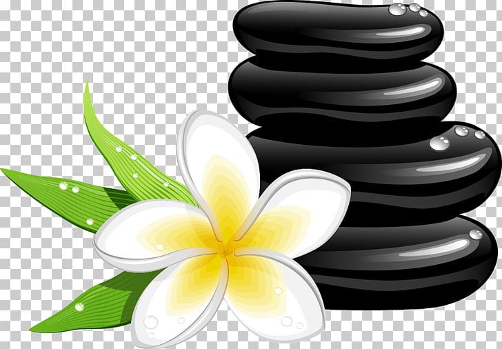 Spa Cosmetology Massage , frangipani and stones, white.