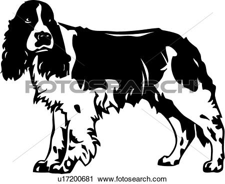 Spaniel Clip Art Illustrations. 489 spaniel clipart EPS vector.