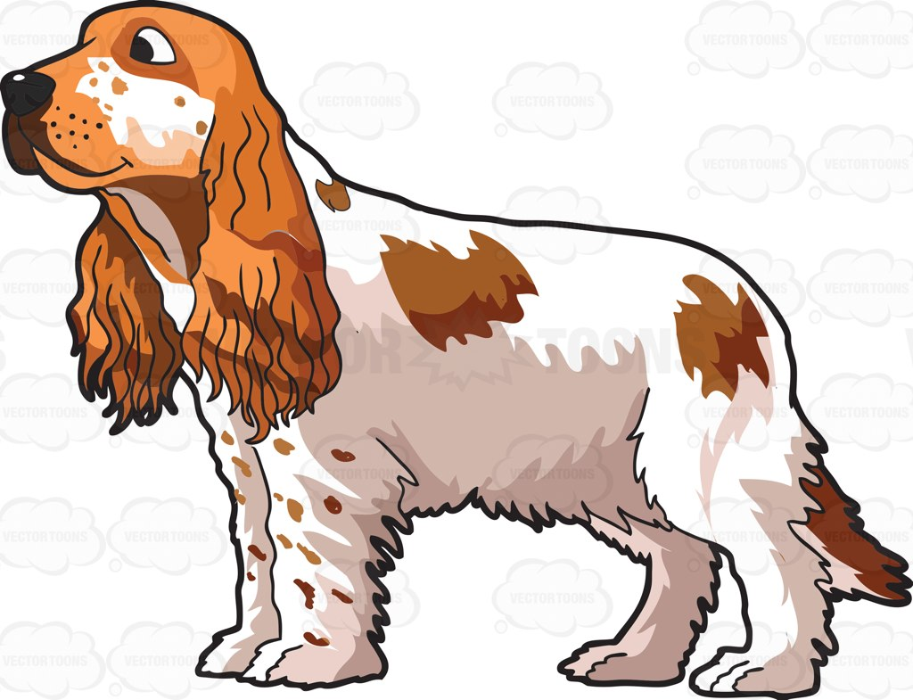 Cocker Spaniel Clip Art.