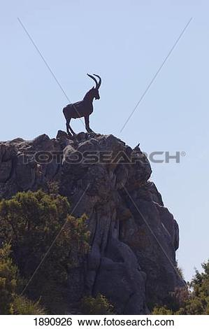Stock Images of monument to cabra hispanica, the spanish mountain.