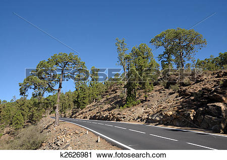 Stock Photography of Mountain Road in El Teide National Park.