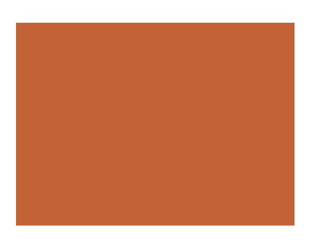 Lion Page :.