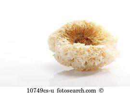Exotic mushroom Stock Photo Images. 1,360 exotic mushroom royalty.