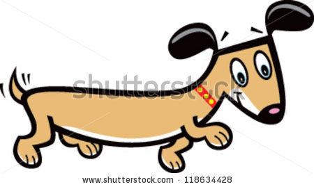 Wiener Dog Stock Photos, Royalty.