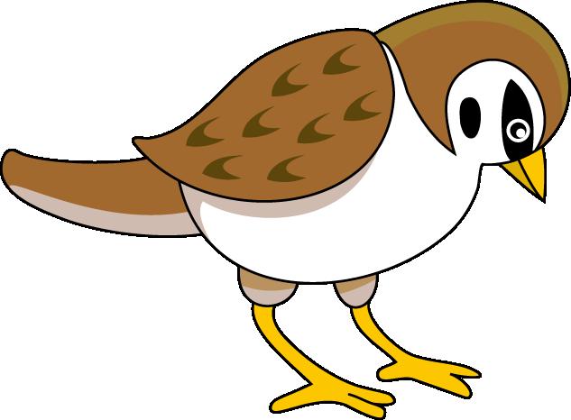 sparrow bird clipart