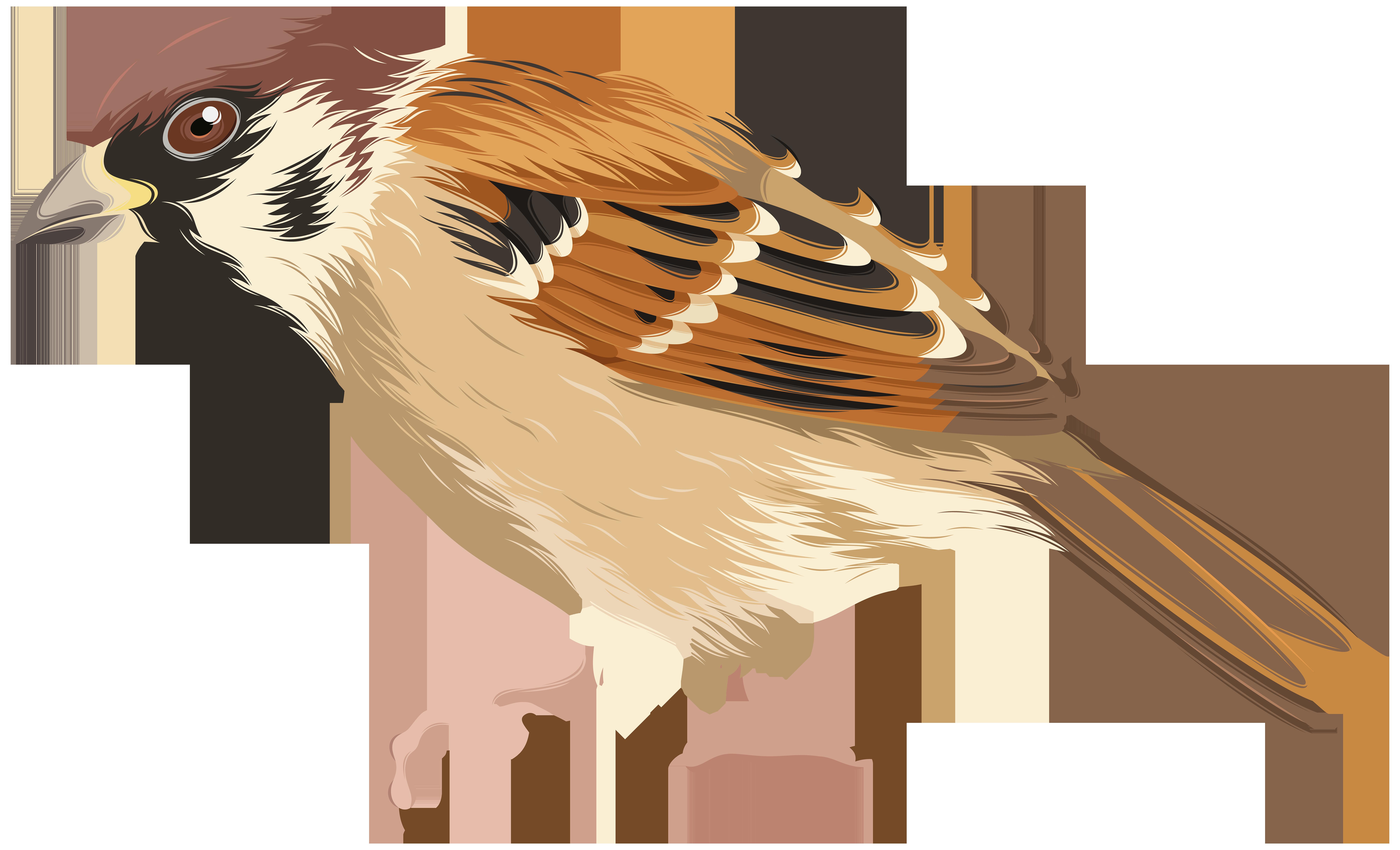 Sparrow PNG Clip Art Image.