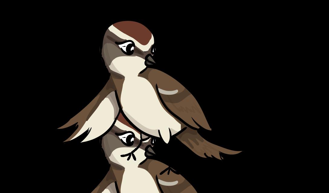 Sparrow Clipart.
