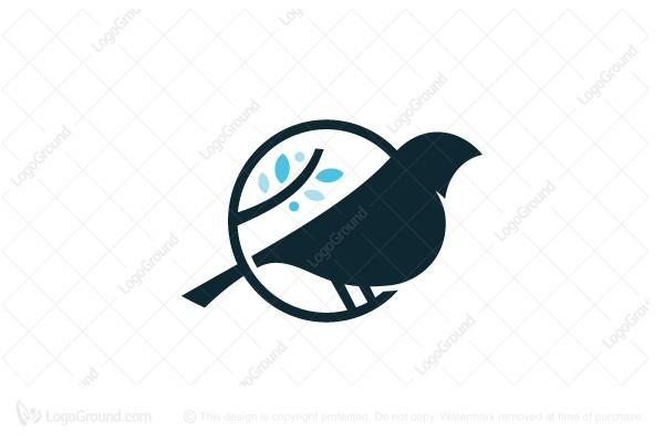 Exclusive Logo 148532, Sparrow Logo.