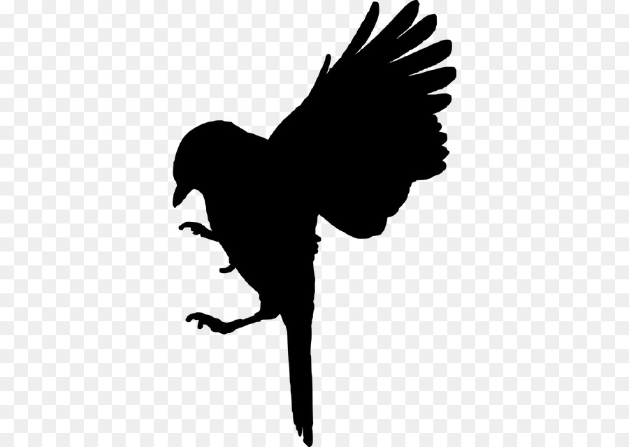 Bird Silhouette.