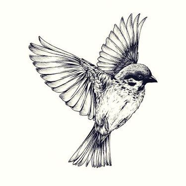 10 Great Sparrow Bird Tattoo Designs.