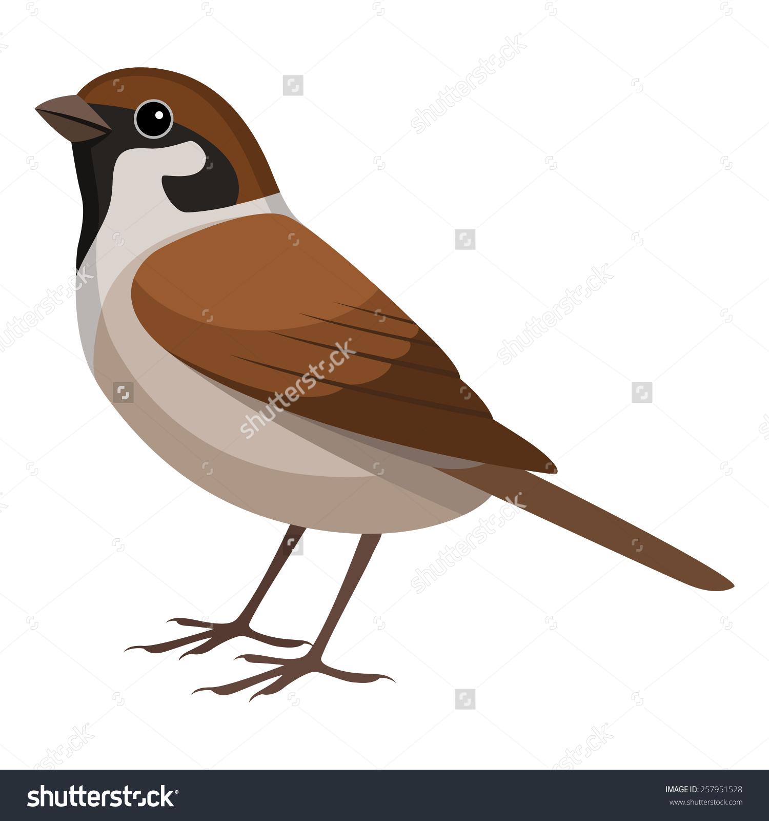 Sparrow clip art.