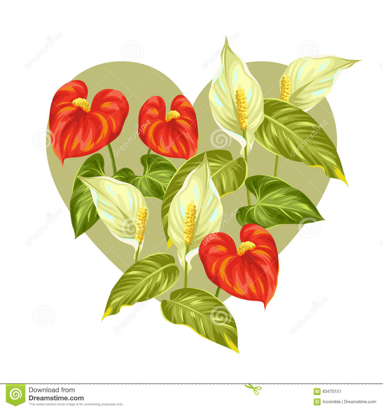 Greeting Card With Flowers Spathiphyllum And Anthurium Stock.