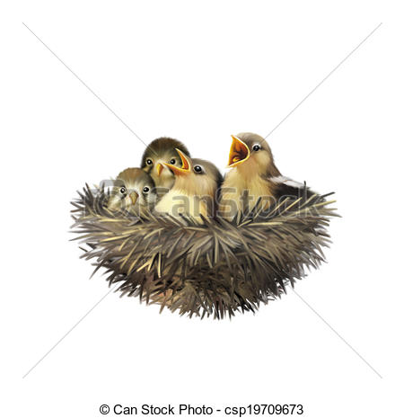 Stock Illustrations of Four hungry baby sparrows in a nest wanting.