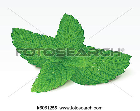 Spearmint Clipart Vector Graphics. 670 spearmint EPS clip art.
