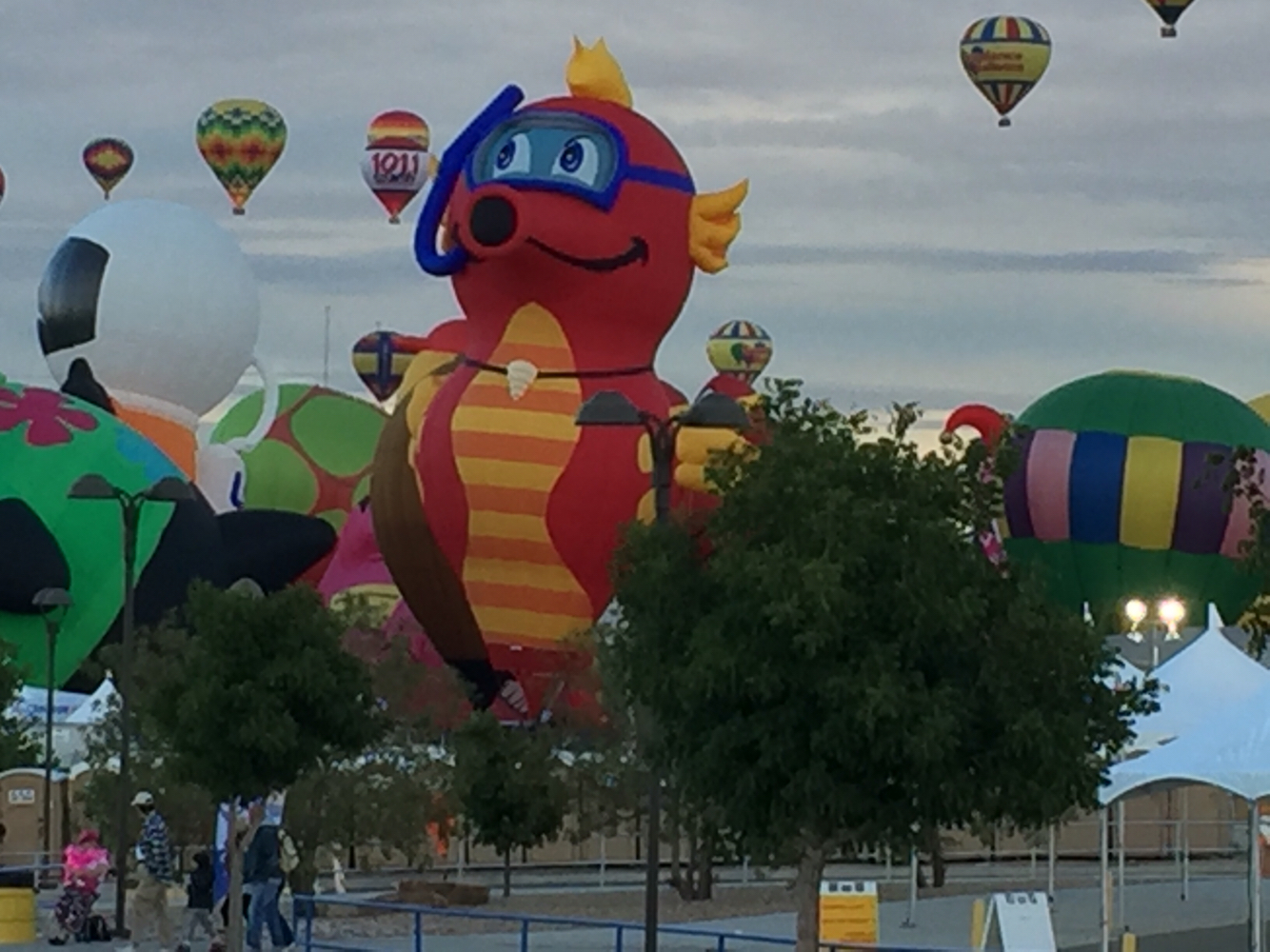 1000+ images about Albuquerque Balloon Fiesta on Pinterest.