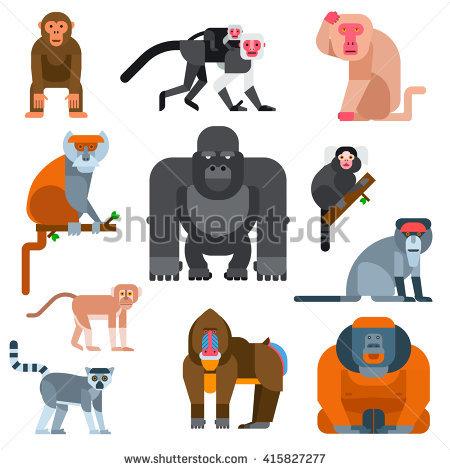 Chimpanzee Banque d'Image Libre de Droit, Photos, Vecteurs et.