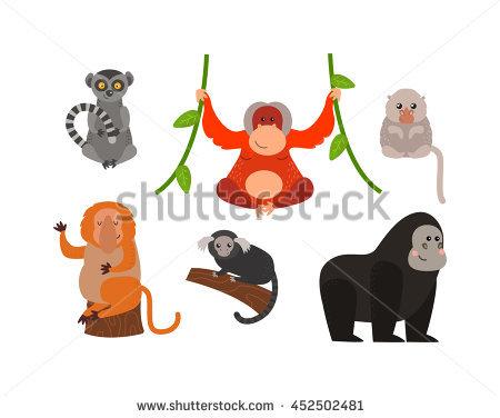 Primate Banco de Imagens, Fotos e Vetores livres de direitos.