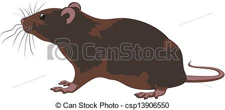 Clipart Vector of rat.