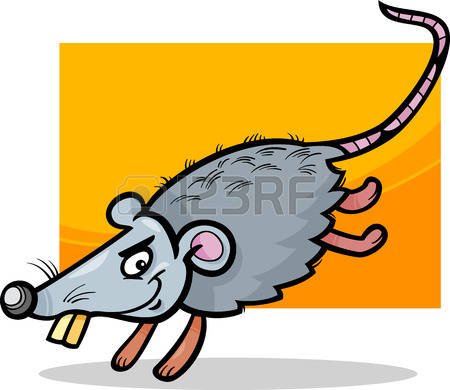 Species Of Rodent Images & Stock Pictures. Royalty Free Species Of.