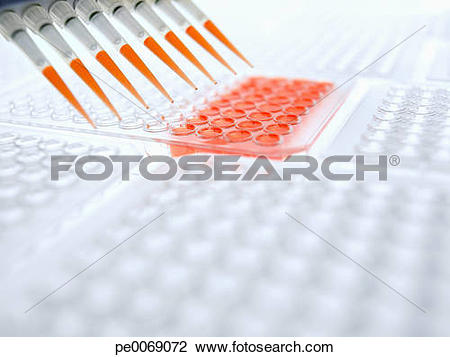 Stock Photo of Pipettes dropping liquid into specimen holder.