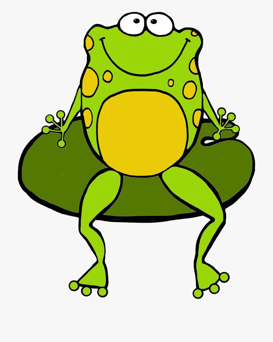 Toad True Frog Tree Frog Clip Art.